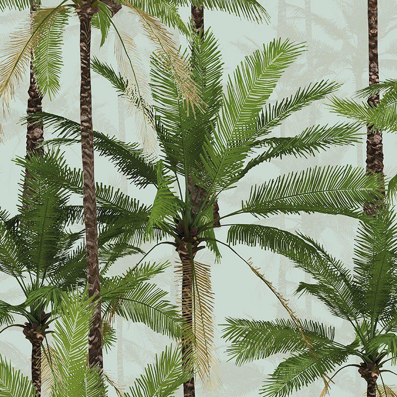 טפט Palms