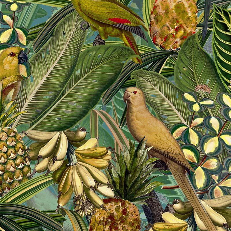 טפט Colorful Birds In Jungle With Bananas- Dark Teal And Green