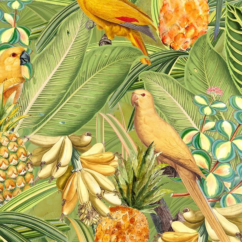 טפט Colorful Birds In Jungle With Bananas