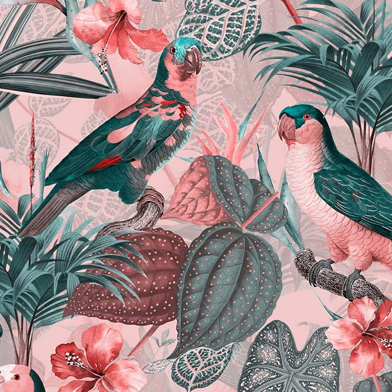 טפט Parrots With Orchids Pink Grey