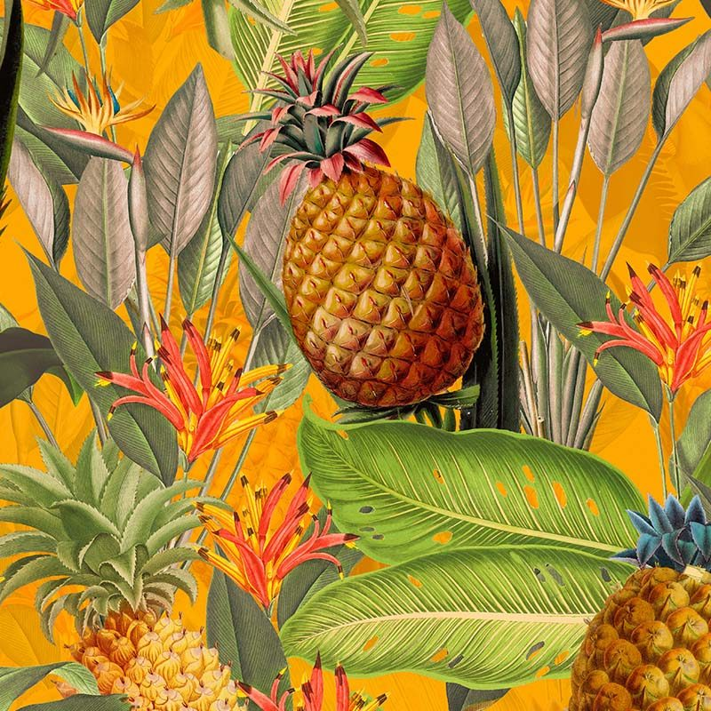 טפט Tropical Leaves And Pineapples Orange