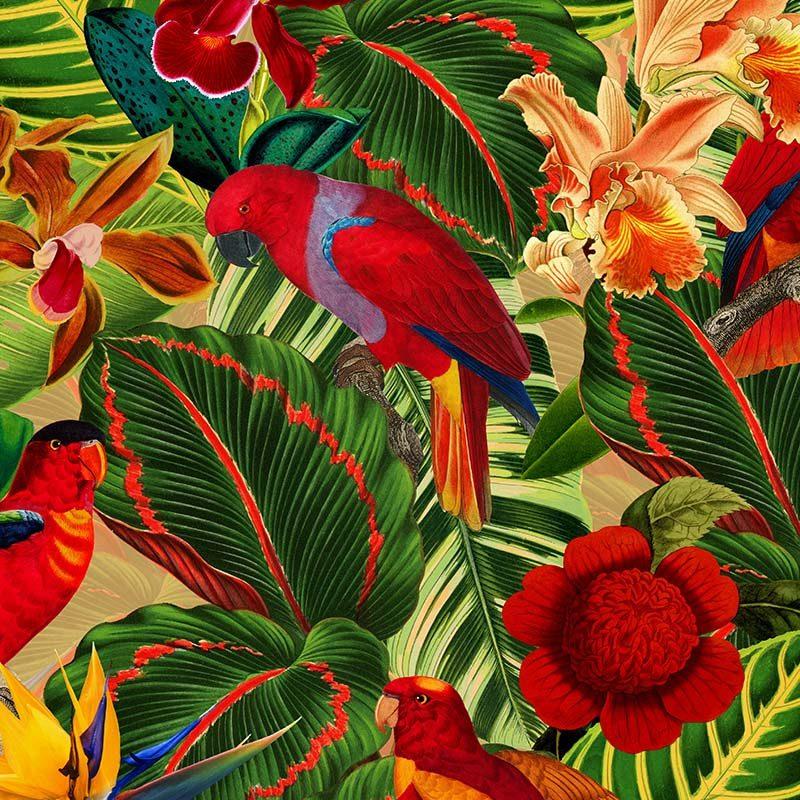 טפט Tropical Jungle With Red Parrots