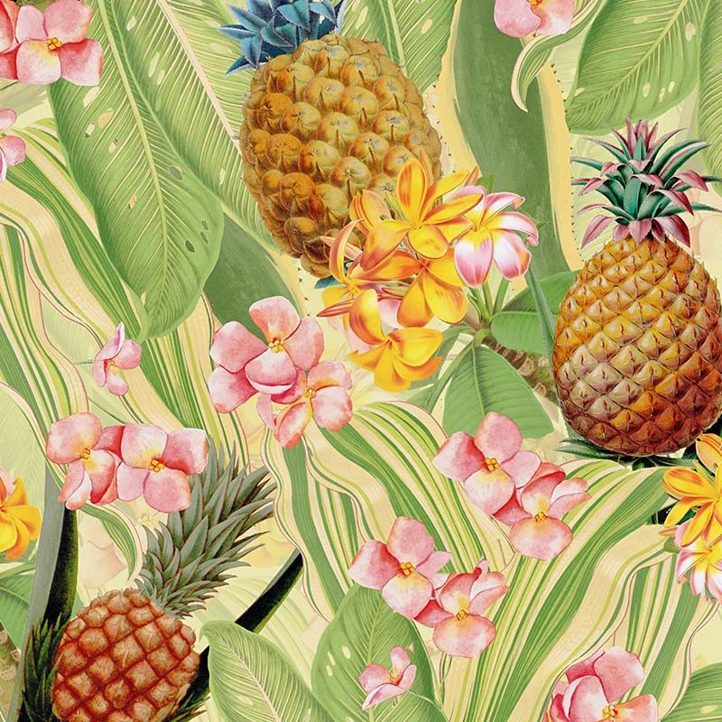 טפט Tropical Leaves Pineapples And Plumeria Flowers