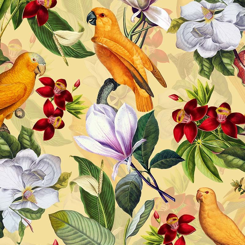 טפט Yellow Parrots In Tropical Flower Magnolia Jungle