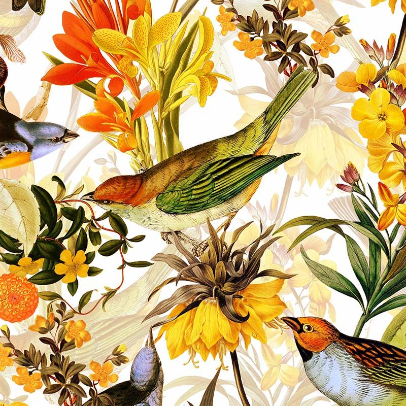 טפט Colorful Birds And Redouté Flowers White
