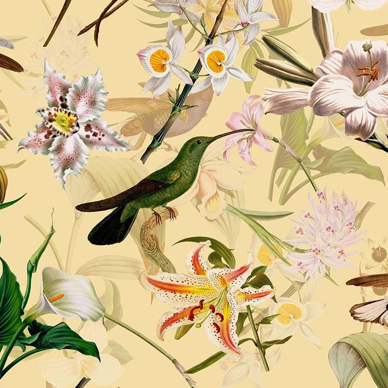 טפט Hummingbirds And Tropical Flowers Soft Cream