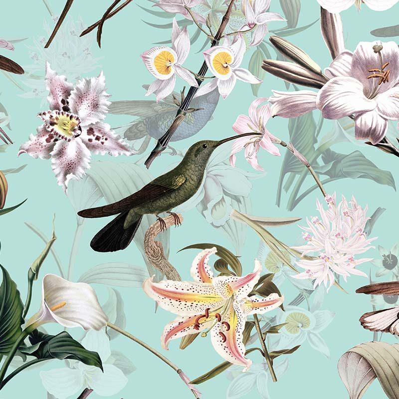 טפט Hummingbirds And Tropical Flowers Teal