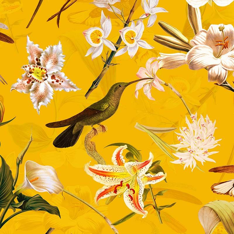טפט Hummingbirds And Tropical Flowers Yellow