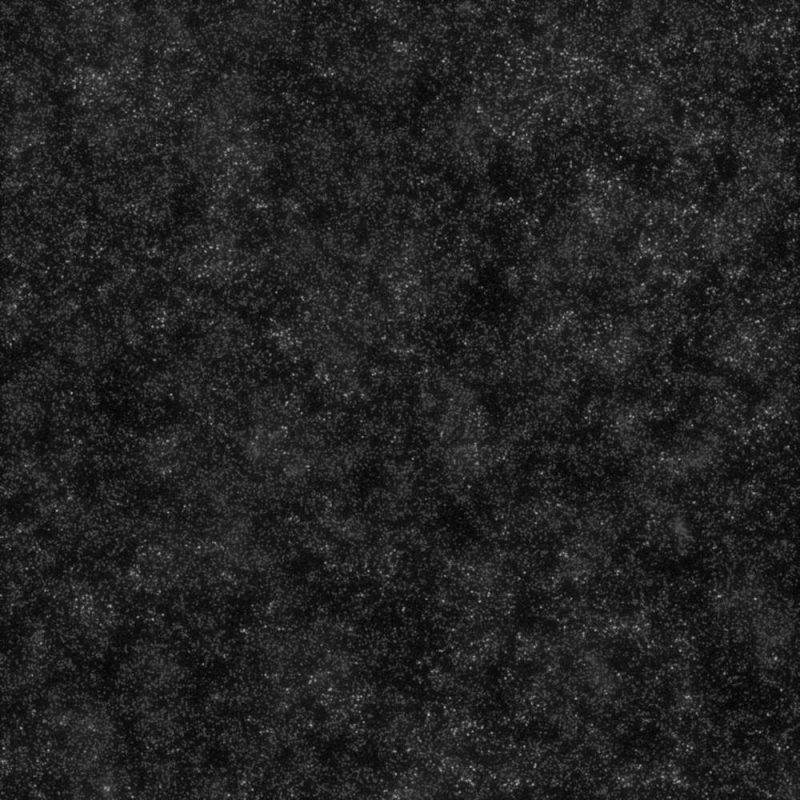 Black Disco R9